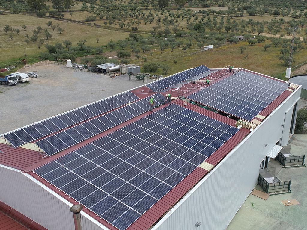 Placas solares en Almazara