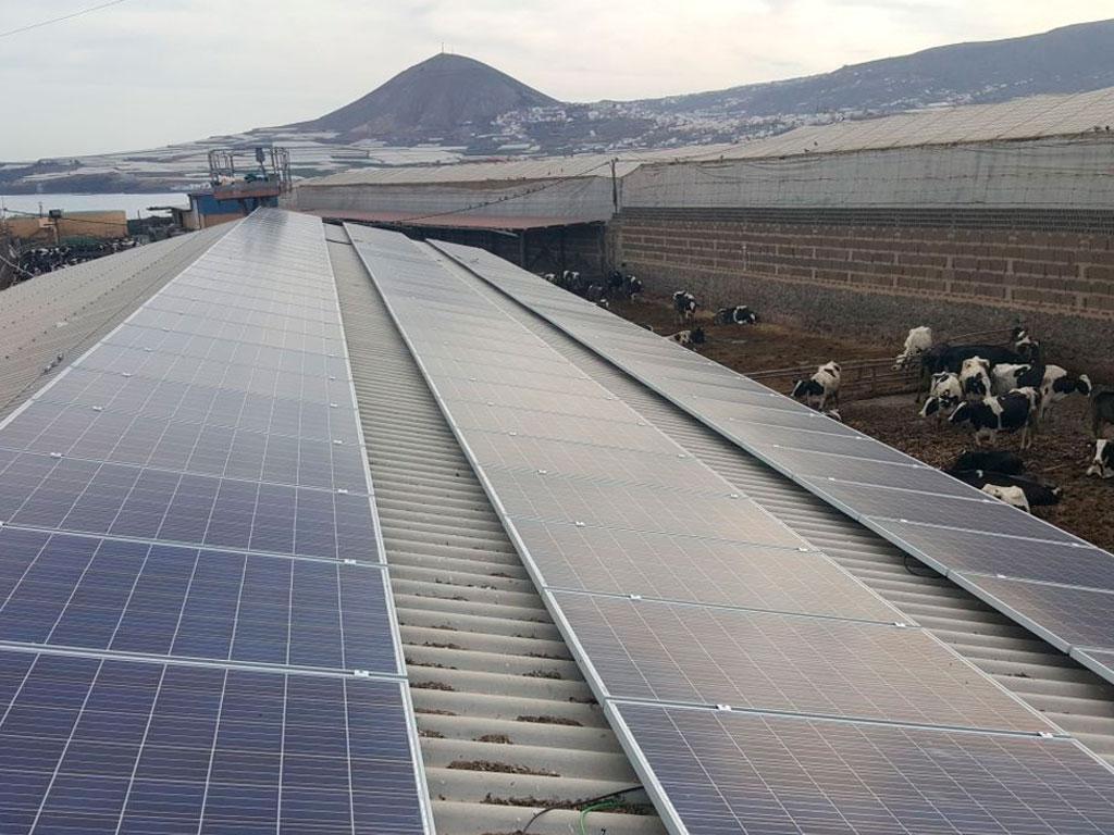 Instalación solar explotación ganadera